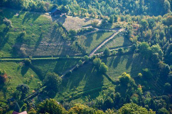 bildhauer aerials 16 555x370 - Aerial