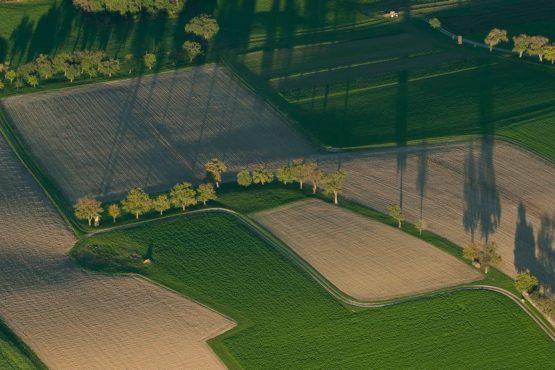 bildhauer aerials 20 555x370 - Aerial
